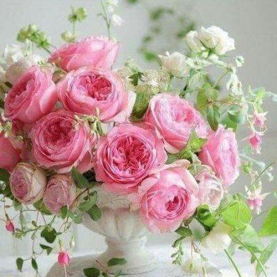 Floral Arrangements Roses